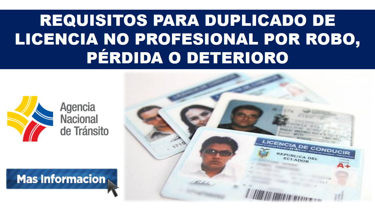 REQUISITOS PARA DUPLICADO DE LICENCIA NO PROFESIONAL POR ROBO, PÉRDIDA O DETERIORO