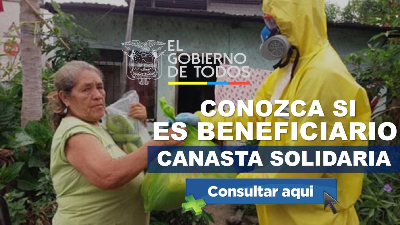 Canasta Solidaria, conozca si es beneficiario
