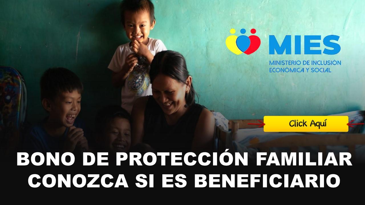 bono de proteccion familiar